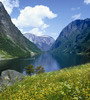 Avatar image for ginadem